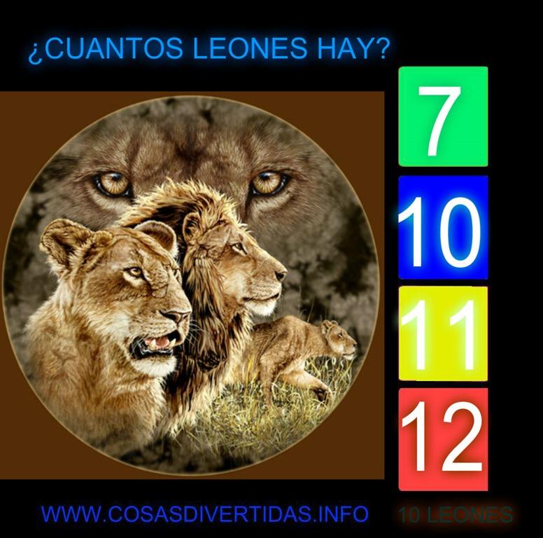 [leones+cosasdivertidas%5B2%5D]