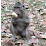 Angkor Smiling tour (Sam)'s profile photo