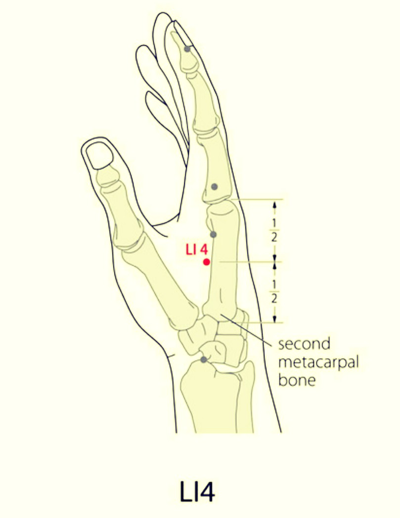SaroEpic Acupuncture : Distal points