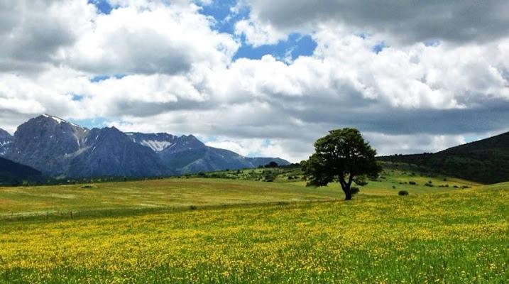 Monte bove  di __francesca_
