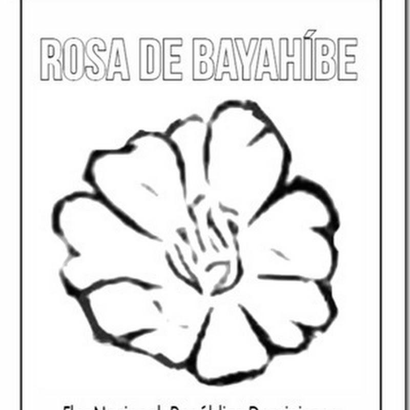 Colorear Flor Nacional de Dominicana