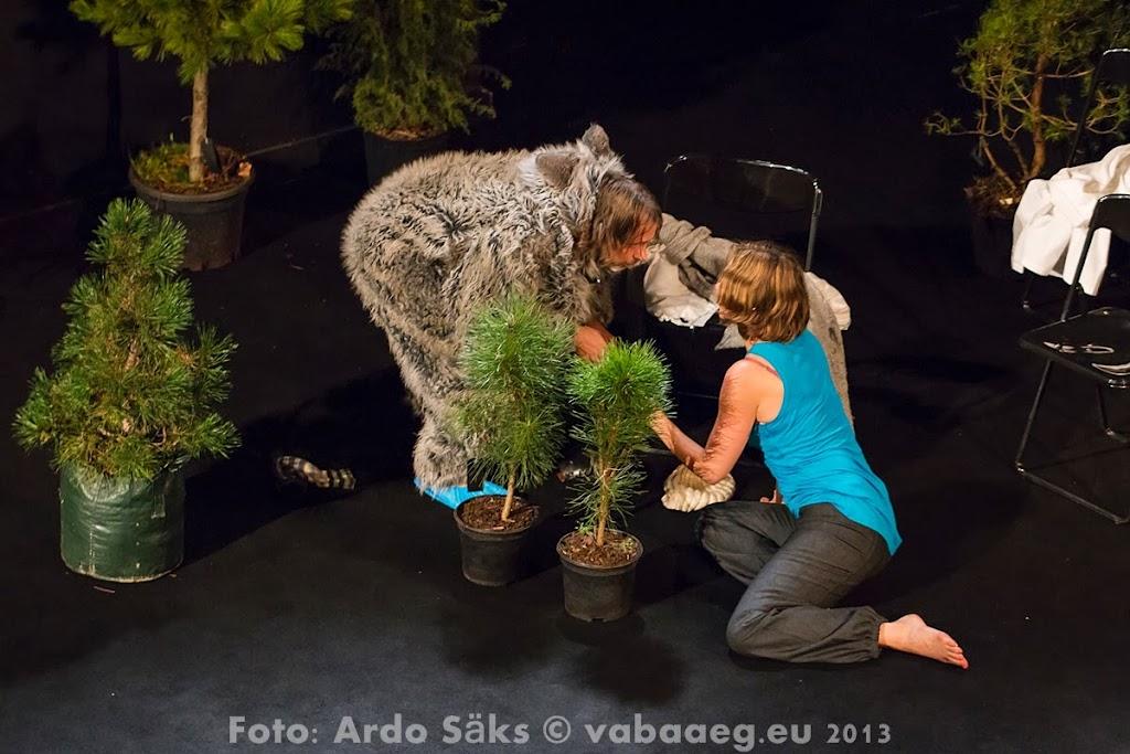 2013.11.21 Leea Klemola - Jessika Kutsikas / esietendus - Polygoni Amfiteater - AS20131121JKEE_076S.jpg