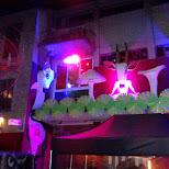 hive nightclub in Zurich, Zurich, Switzerland