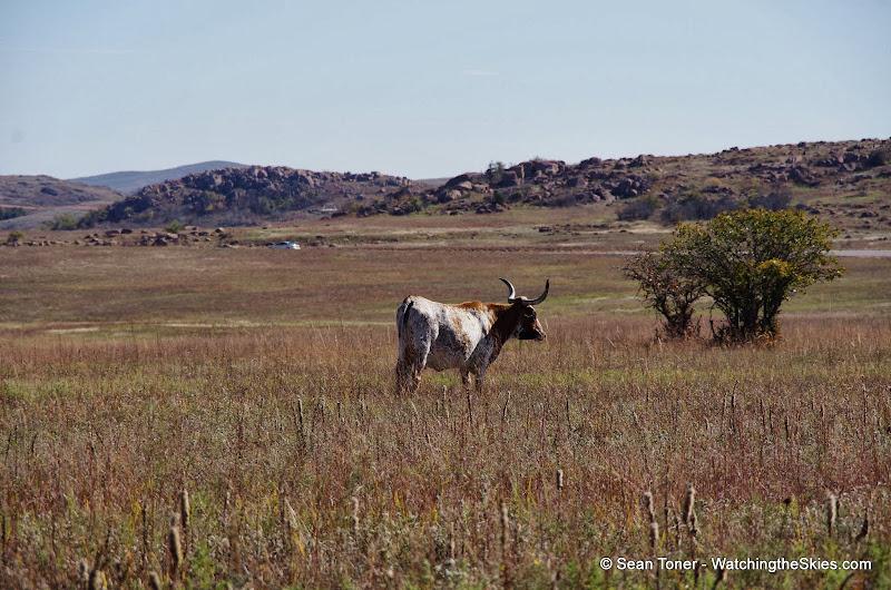 11-09-13 Wichita Mountains Wildlife Refuge - IMGP0401.JPG