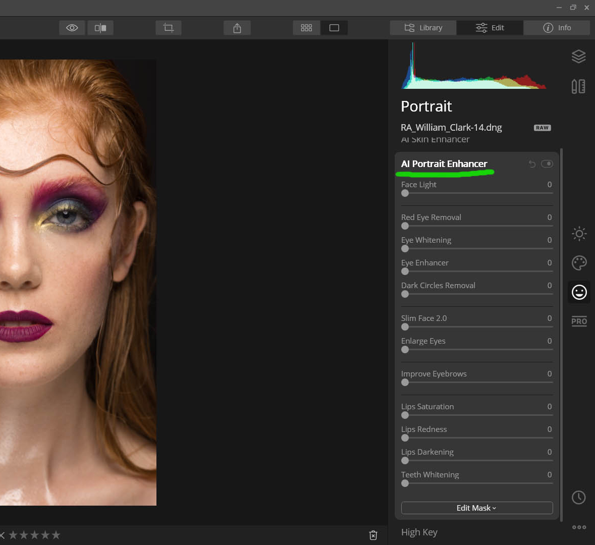 Luminar Ai Portrait enhancer