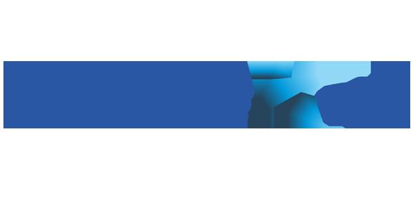 Nineleaps logo