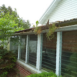 Roof and Structure - DSC01274.JPG