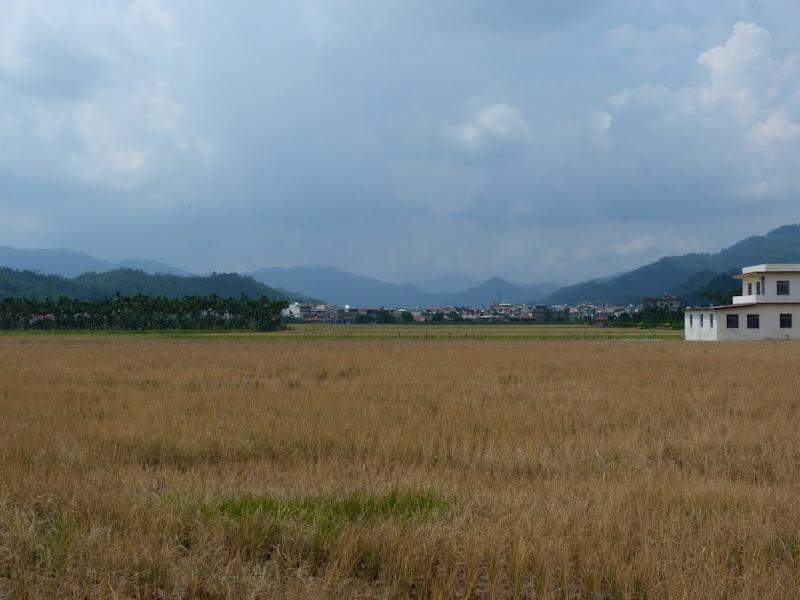 Tainan County. De Baolai à Meinong en scooter. J 10 - meinong%2B156.JPG