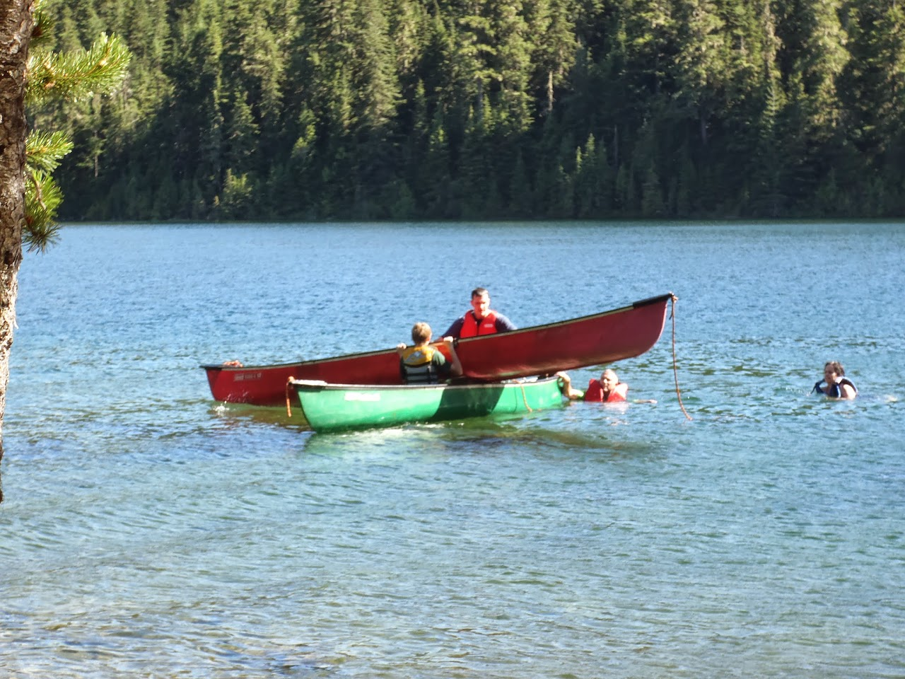 Ross Lake July 2014 - P7080089.JPG