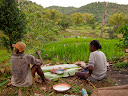 And when you work in the rice fields during the day, you eat lunch in them, often on a banana (or ravinala) leaf.