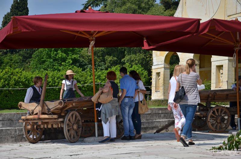 Villa Maser mostra ciliegie 18