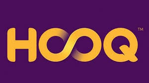 NEW HOOQ BIN Working 2021