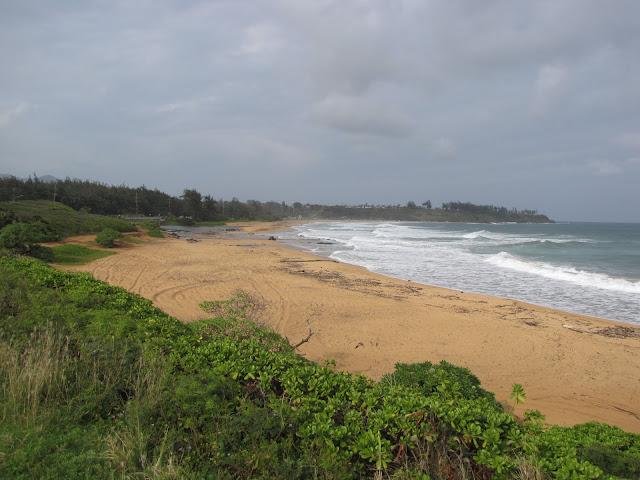 2012 - IMG_9075_Kealia_Beach.JPG