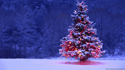 how to decorate Christmas tree on Christmas eve?