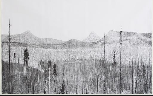 Mortenson_B and B Complex Fires, 2017 gravure sur bois, troisième tirage d'une série limité à 10. 210 x 150 cm