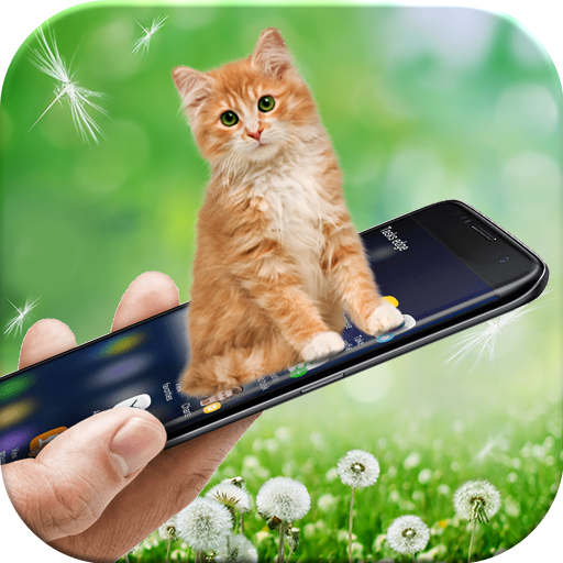 Cat in Phone: Cute Virtual Kitten Prank App Free