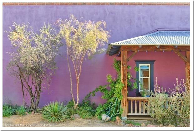 151229_Tucson_0023