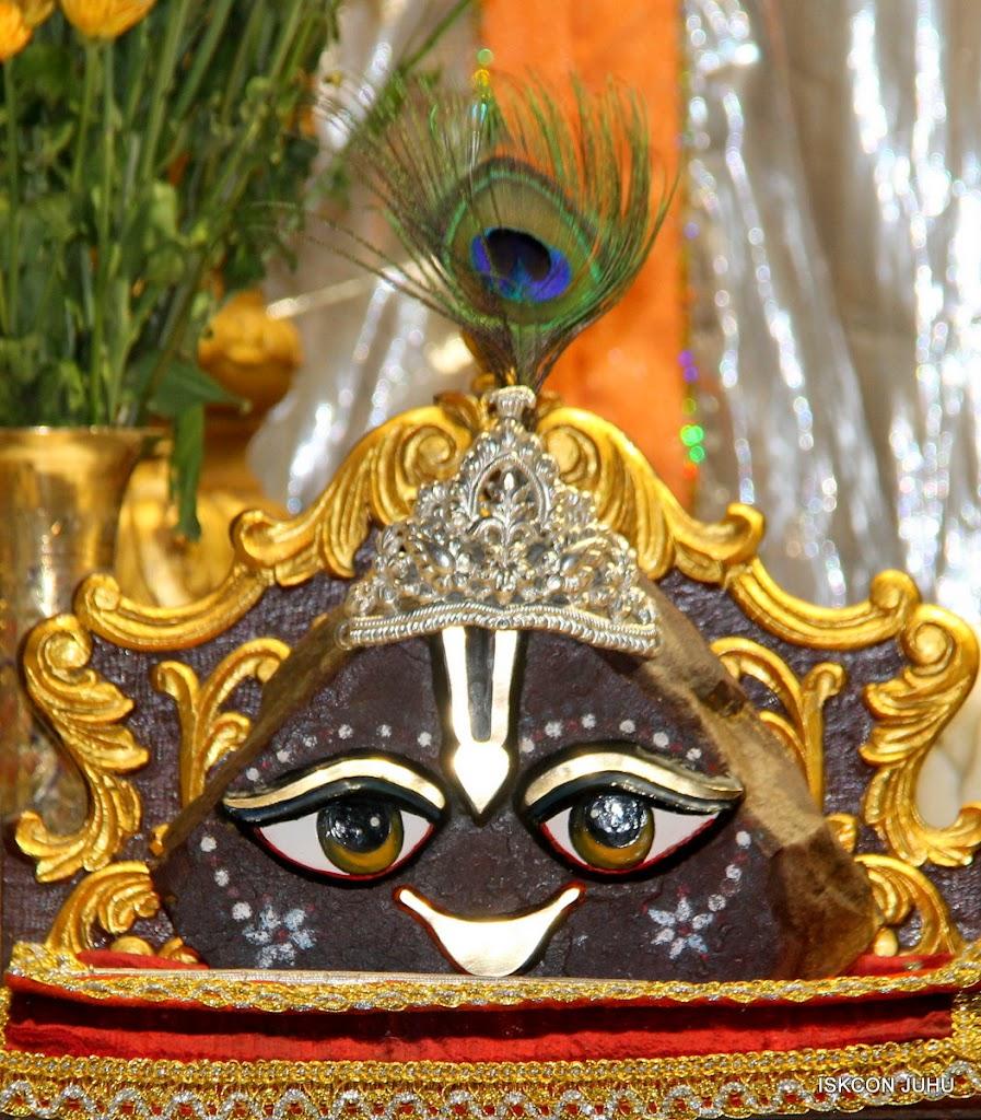 ISKCON Juhu Mangal Deity Darshan on 29th April 2016  (23)
