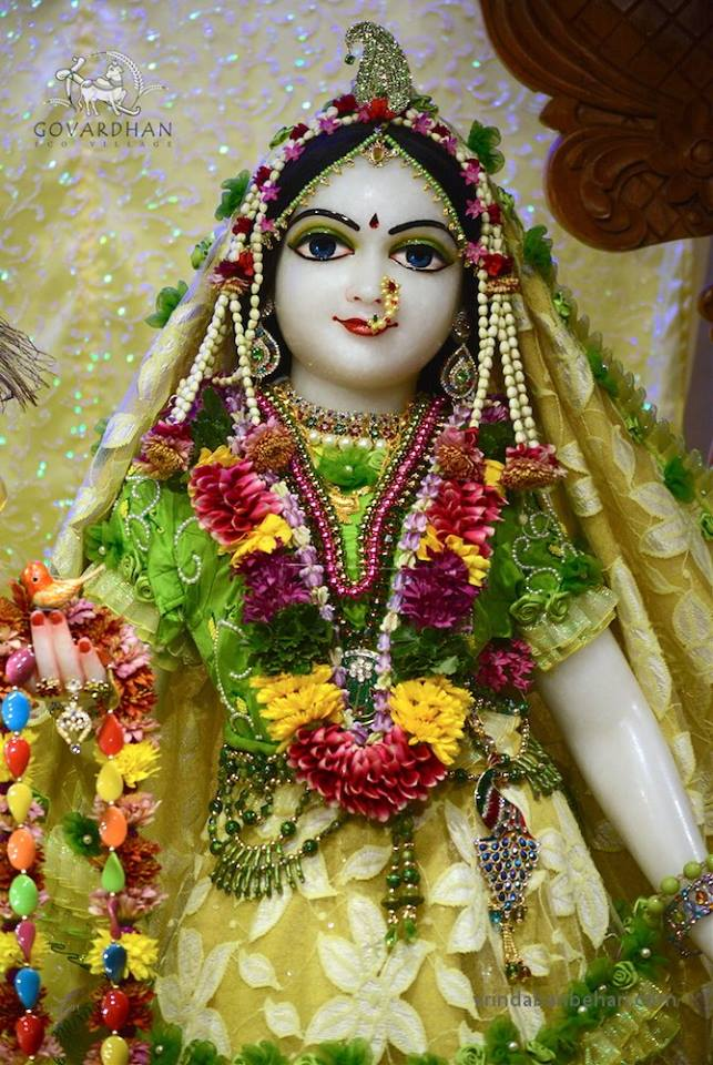 ISKCON GEV (Wada) Deity Darshan 31 Jan 2016 (6)