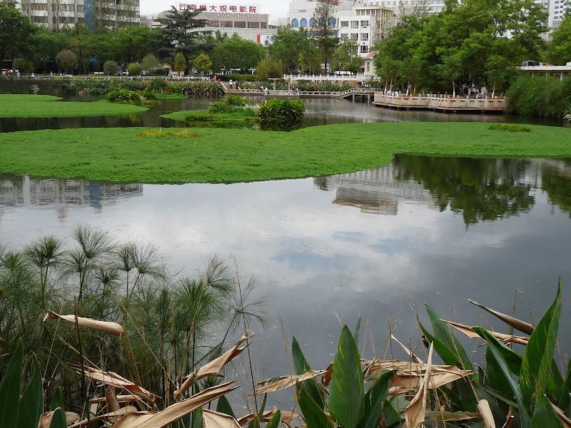 Chine .Yunnan . Lac au sud de Kunming ,Jinghong xishangbanna,+ grand jardin botanique, de Chine +j - Picture1%2B287.jpg