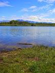 Il coccodrillo del Lago di Ragogna?