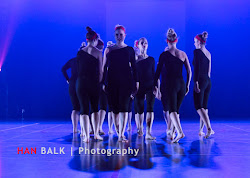 Han Balk Voorster Dansdag 2016-4748.jpg