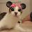 Rich Kim (Mushedroom's Toy Box)'s profile photo