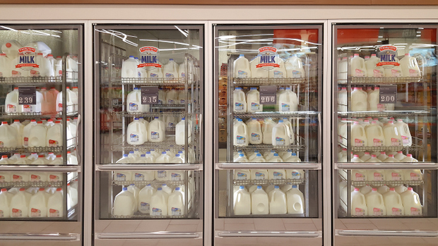 photo of the milk case