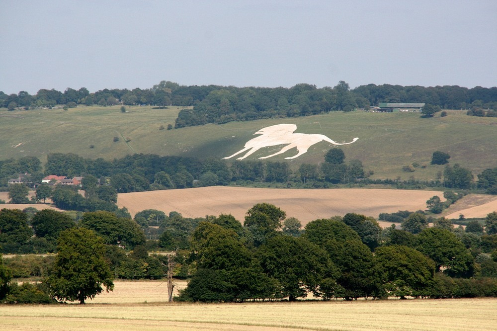 whipsnade-white-lion