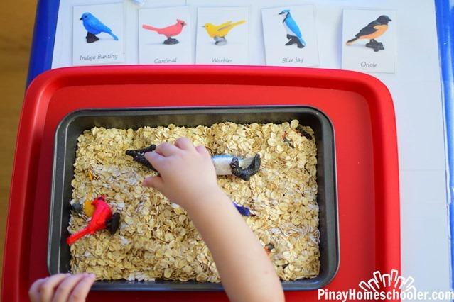 birdthemetotschool-2628