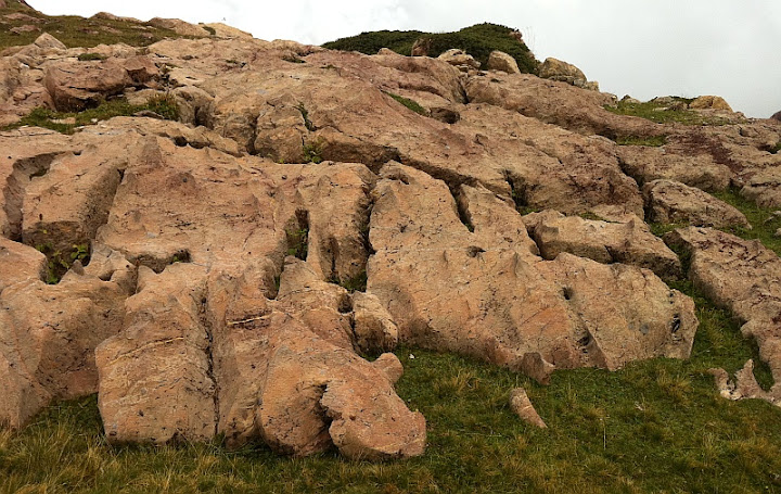 Limestone Sedimentary Rocks
