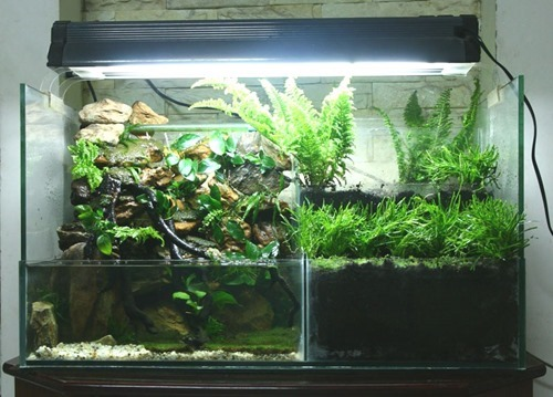 aquarium hood