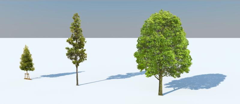 การกำหนดค่า Material ของต้นไม้แบบ 2D ให้มีความโปร่งใส Vraytree18