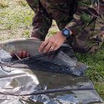 20160706_Fishing_Grushvytsia_022.jpg