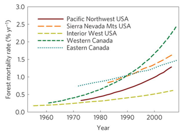 Reported tree mortality observations are increasing throughout North America, across a mean annual precipitation range of 202–3,928 mm yr−1 and a mean annual temperature range of −5.7–12.0 °C. Graphic: McDowell, et al, 2015 / Nature Climate Change