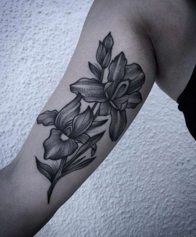 essas_dinmicas_da_ris_de_flores