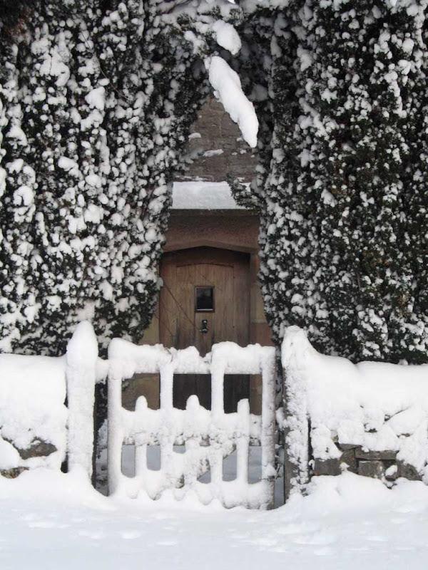 SnowBR5