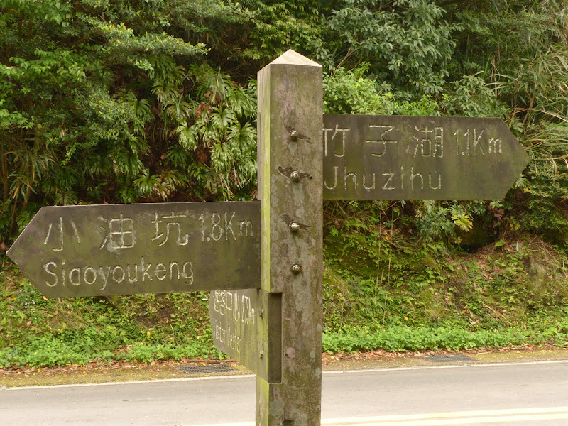 Yangminshan Shitoushan et Jinshan - P1040886.JPG
