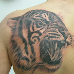 lion tiger - Shoulder Blade Tattoos Designs