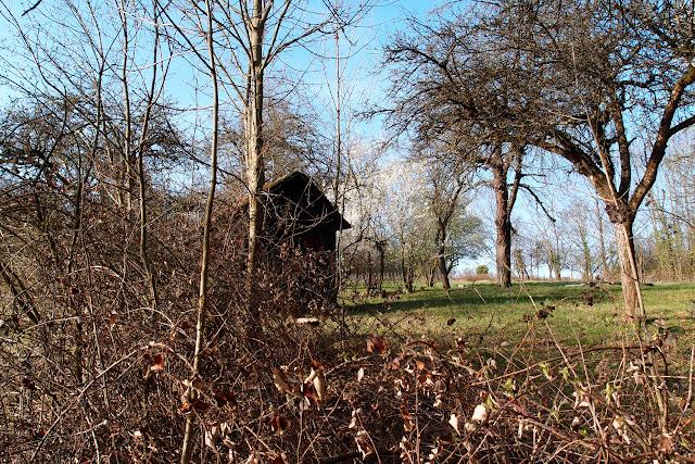 Issenheim - Thann