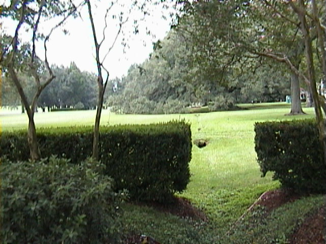 0990A_Southern_Mansion_Garden_-_New_Orleans