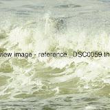 _DSC0059.thumb.jpg