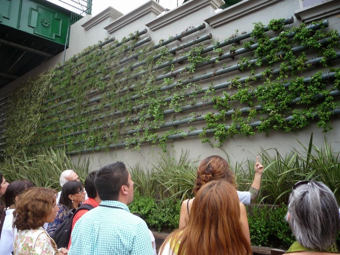 Cursos de jardines verticales argentina uruguay y chile for Jardines verticales buenos aires