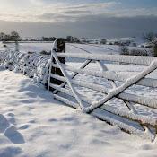 2010 Winter Snow