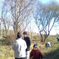 Plantación en el Arroyo de Valdecarrizo