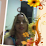 Delci Duarte's profile photo
