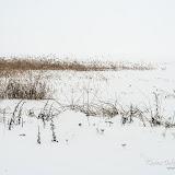 Снежная мгла на озере Разнас