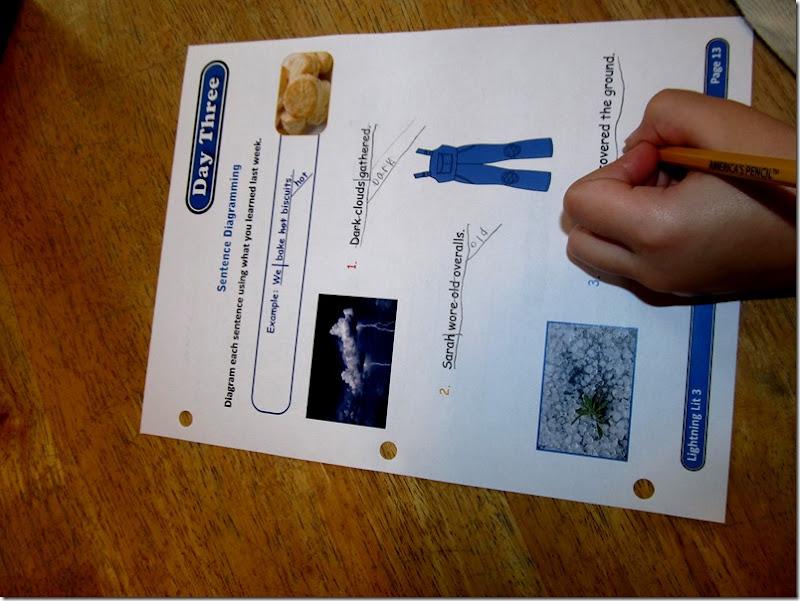 Review of Grade 3 Lightning Lit from Hewitt Homeschooling at Homeschooling Hearts & Minds 3