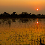 Africa-Delta Landscape 1.jpg