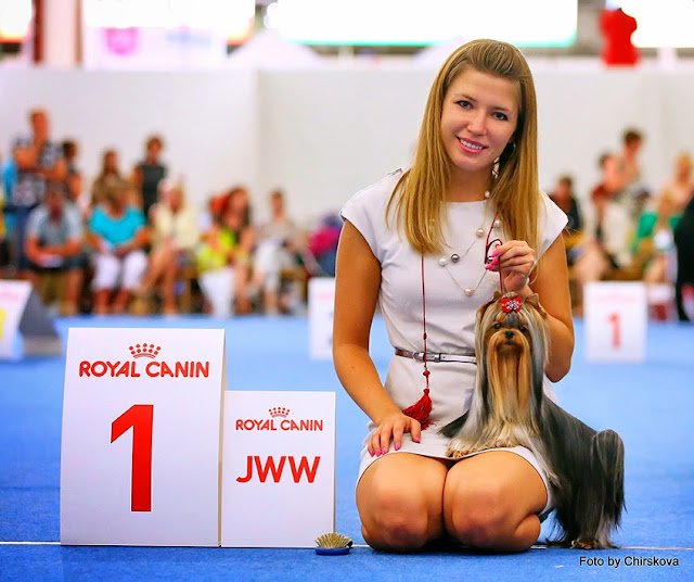 World Dog Show-2014 116